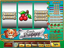 Cash Flow™ Slot Machine Game to Play Free in Saucifys Online Casinos