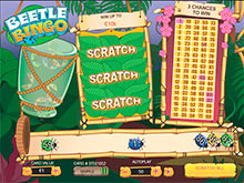 Play Beetle Bingo Scratch at Casino.com UK